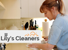 Domestic Cleaners Wandsworth