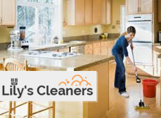 Domestic Cleaners SW18