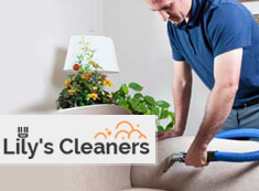 Sofa Cleaning SW18