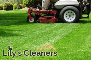 Lawn Mowing Wandsworth