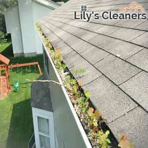 reliable-gutter-cleaning-wandsworth